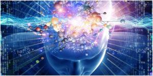 Mendja e njeriut